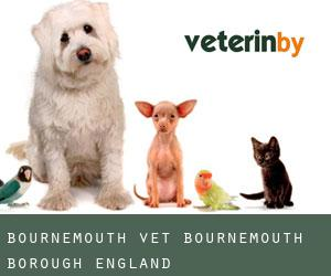 Bournemouth Vet (Bournemouth (Borough), England)