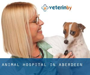 Animal Hospital in Aberdeen