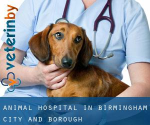 Animal Hospital in Birmingham (City and Borough)