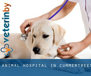 Animal Hospital in Cummertrees