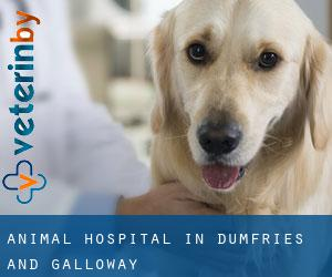 Animal Hospital in Dumfries and Galloway