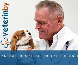 Animal Hospital in East Sussex