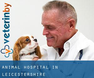 Animal Hospital in Leicestershire