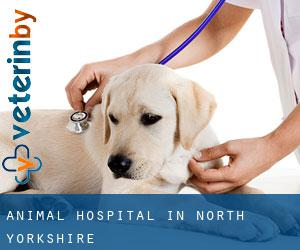 Animal Hospital in North Yorkshire