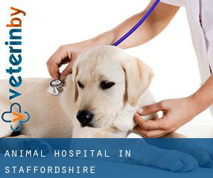 Animal Hospital in Staffordshire
