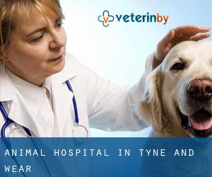 Animal Hospital in Tyne and Wear