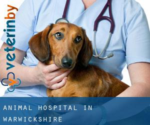 Animal Hospital in Warwickshire
