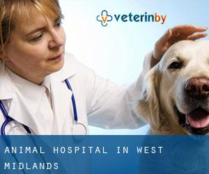 Animal Hospital in West Midlands