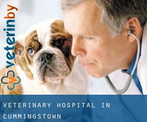 Veterinary Hospital in Cummingstown