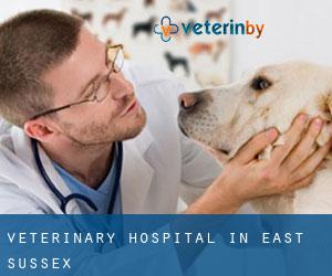 Veterinary Hospital in East Sussex