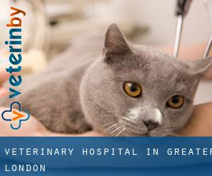Veterinary Hospital in Greater London