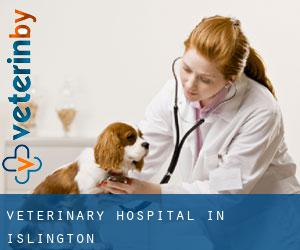 Veterinary Hospital in Islington