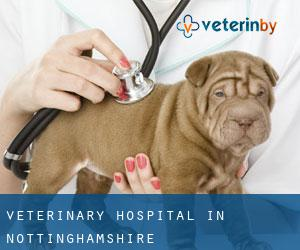 Veterinary Hospital in Nottinghamshire