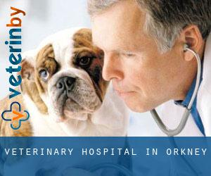 Veterinary Hospital in Orkney