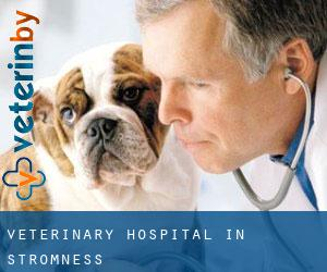 Veterinary Hospital in Stromness