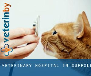 Veterinary Hospital in Suffolk