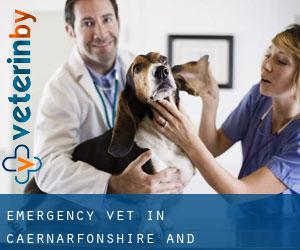 Emergency Vet in Caernarfonshire and Merionethshire