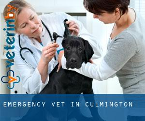 Emergency Vet in Culmington