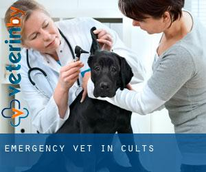 Emergency Vet in Cults