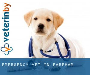 Emergency Vet in Fareham