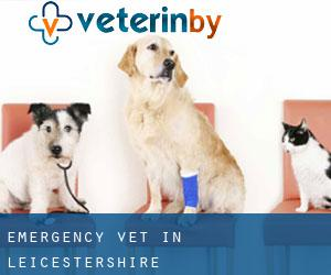 Emergency Vet in Leicestershire