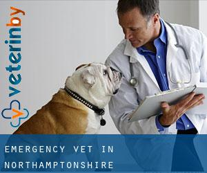Emergency Vet in Northamptonshire