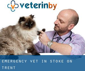 Emergency Vet in Stoke-on-Trent