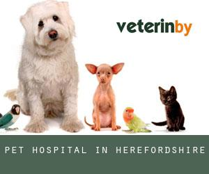 Pet Hospital in Herefordshire