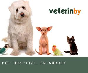 Pet Hospital in Surrey
