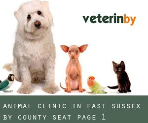 Animal Clinic in East Sussex by County Seat - page 1