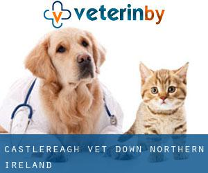 Castlereagh vet (Down, Northern Ireland)