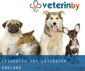 Leicester Vet (Leicester, England)