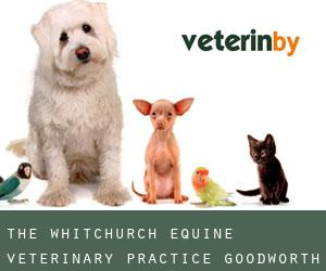 The Whitchurch Equine Veterinary Practice Goodworth Clatford