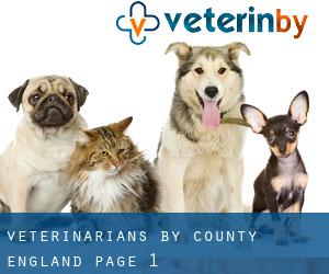 veterinarians by County (England) - page 1