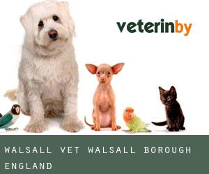 Walsall vet (Walsall (Borough), England)