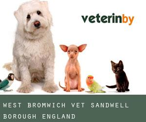 West Bromwich vet (Sandwell (Borough), England)